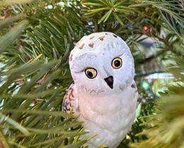 christmas ornament LZ
